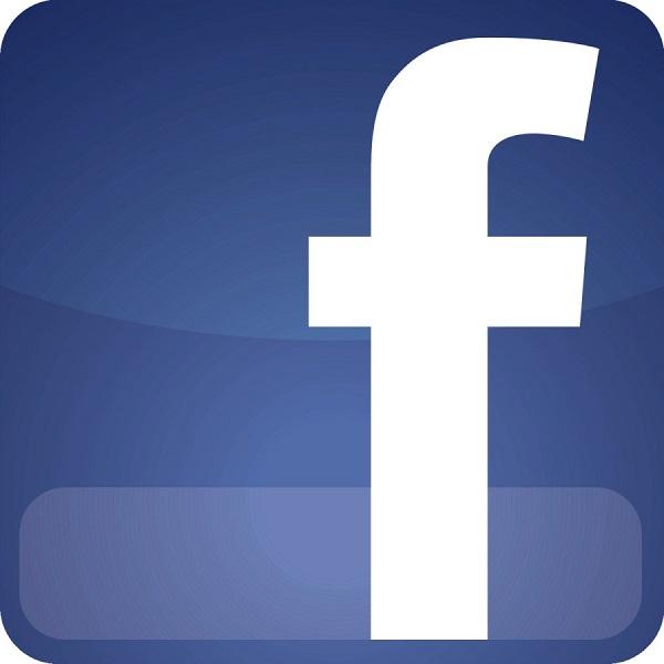 facebook ses